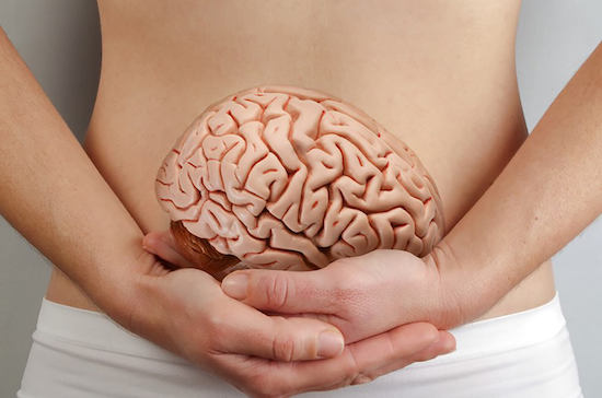 A quick peek at your second brain – the gut microbiome